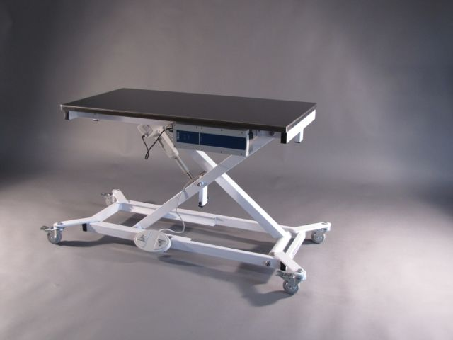 Wondrous Professional Pet Grooming Tables For Sale Electric Lifts Home Interior And Landscaping Eliaenasavecom